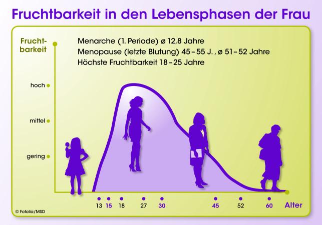 Fruchtbarkeit der Frau in einer Kurve dargestellt (Grafik © MSD)