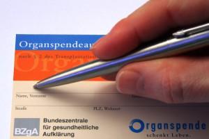 Organspendeausweis - Organspende schenkt Leben!