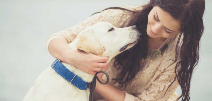 Frauchen mit Ihrem Hund (Foto hteam shutterstock)