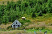 Multifunktionale grüne Architektur