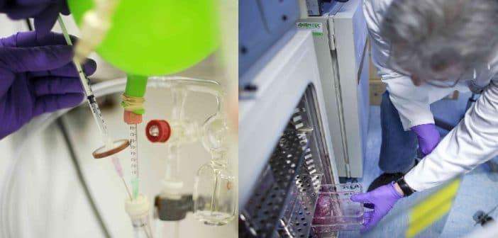 Einsatz von Biomarkern in der Krebsmedizin