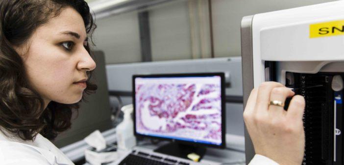 Big Data ist in der Forschung unverzichtbar