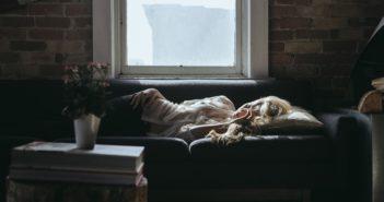 Nächtlicher Harndrang - Ursachen und Behandlungsmöglichkeiten