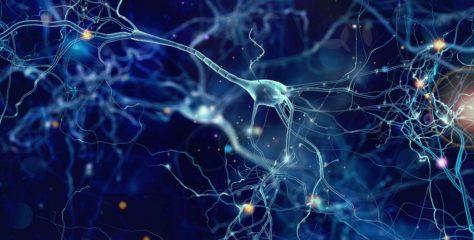 Schizophrenie und Depression – Wenn die Psyche aus der Balance gerät