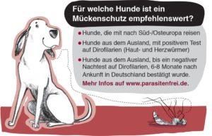 Für welche Hunde ist ein Mückenschutz empfehlenswert?