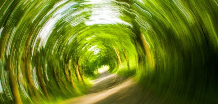 Schwindel: wie er entsteht und was Sie dagegen tun können