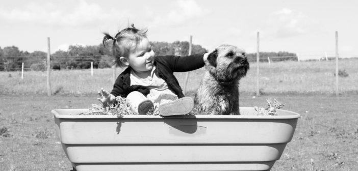 Baby und Haustier - Das sollten Sie beachten