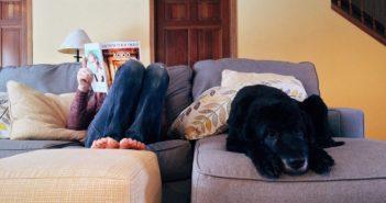 Person & Hund in Quarantäne liegen auf dem Sofa