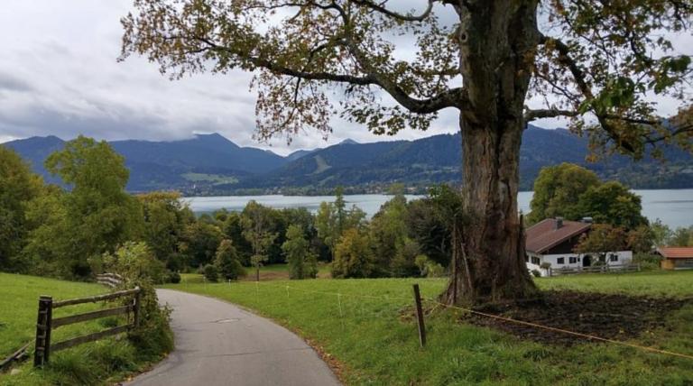 Radtouren Bayern Natur & Seen