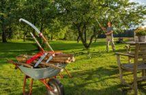 Mann bei der Baumpflege im Garten ohne Leiter