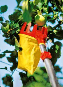 Erntehelfer für einen Obstbaum