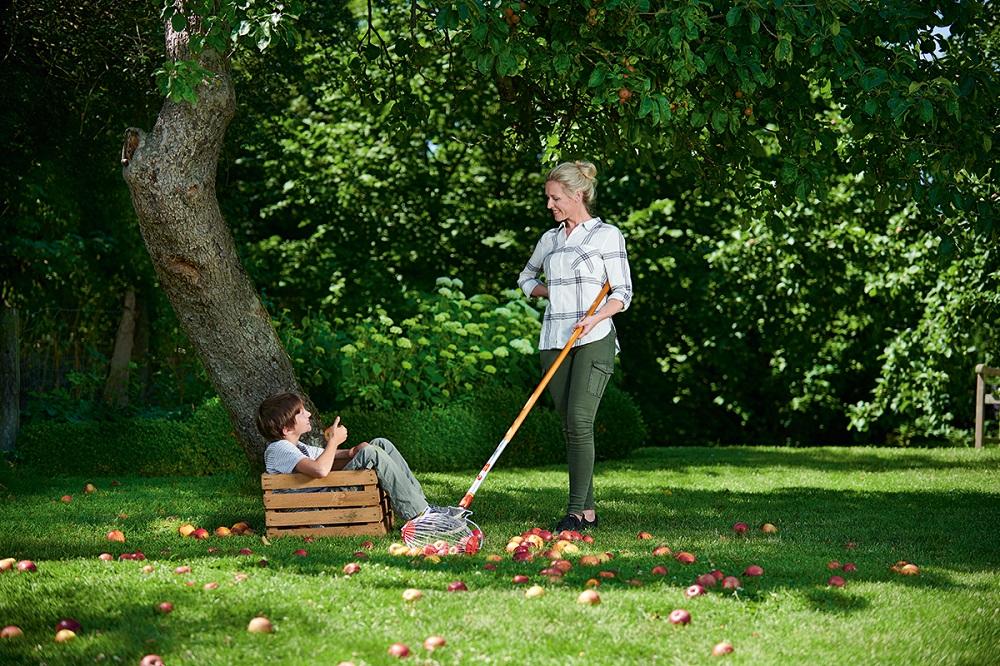 Familie beim Aufsammeln von Obst im Garten