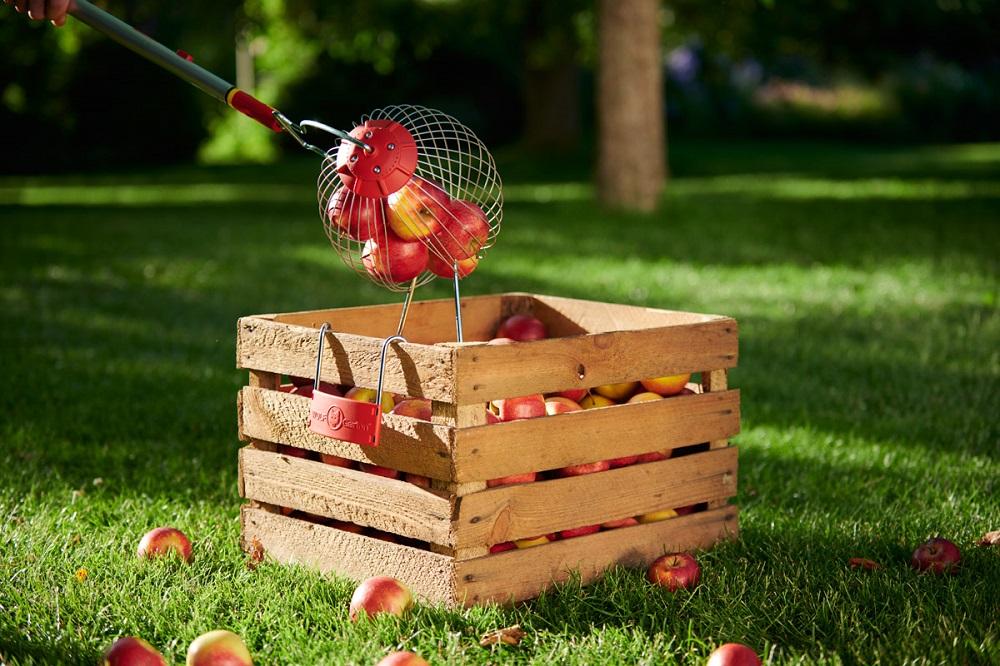 Erntehelfer zum Ernten von Obst/Äpfeln