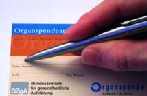 Organspendeausweis wird ausgefüllt