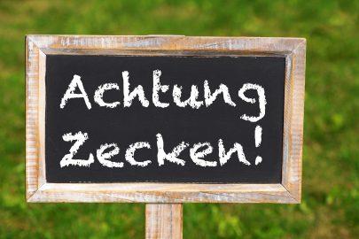 Achtung Zecken! (Foto © Fotolia / Dora Zett)